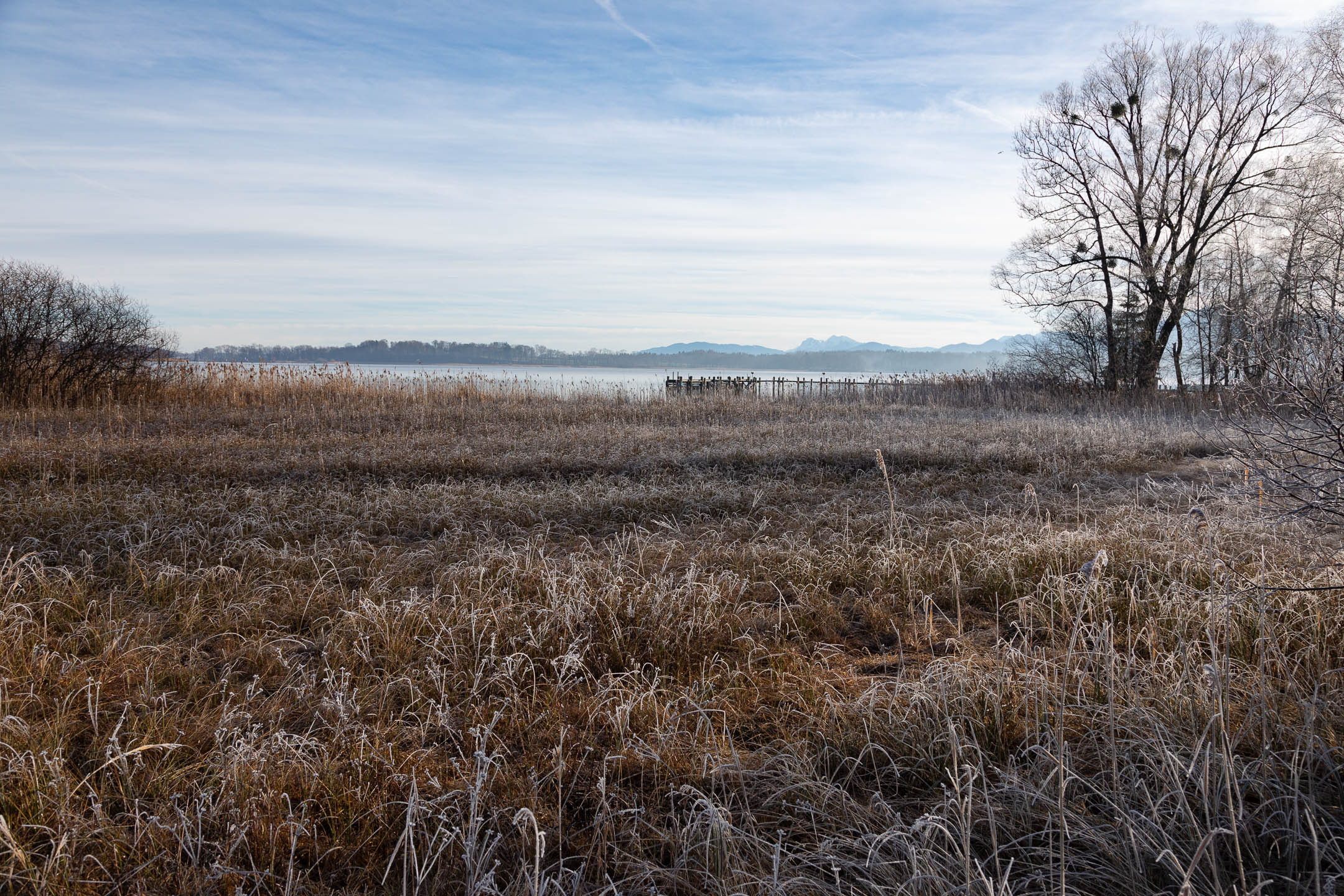 FrozenGrassLakeChimseeGermany12.26.18copy