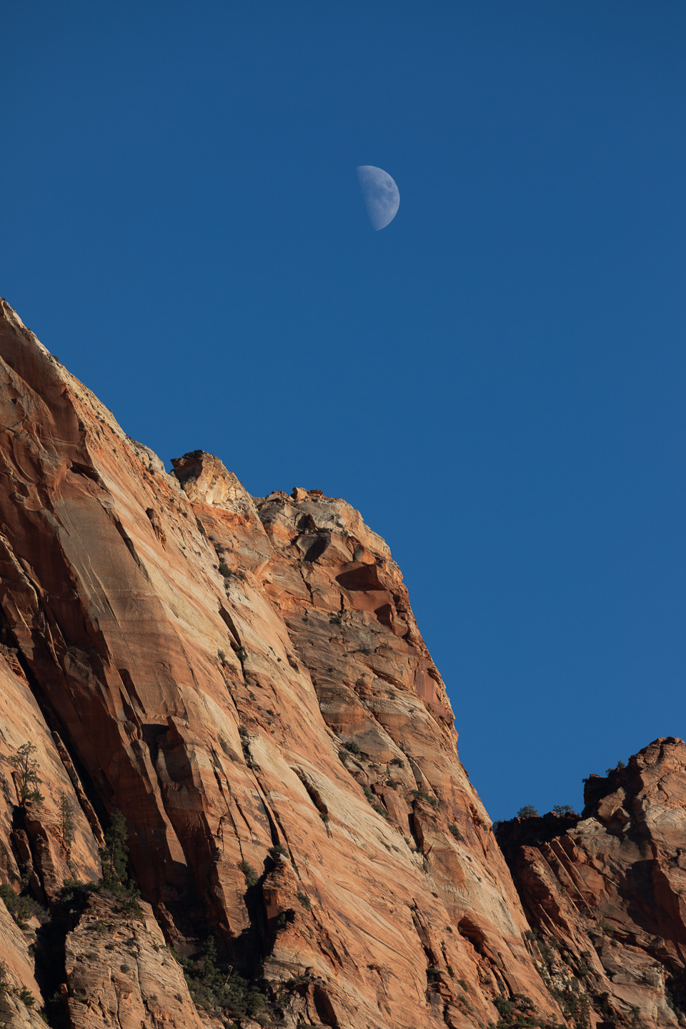 ZionUtahMoon11.4.19copy